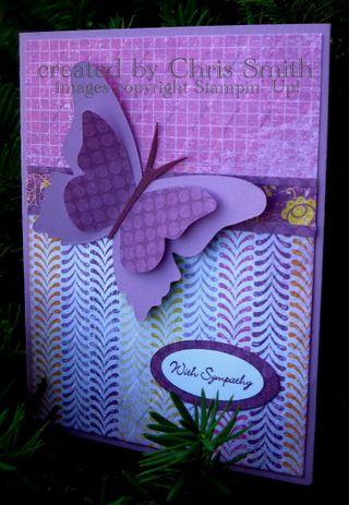 Razzlb lemonade butterfly