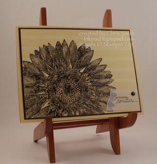 Sunflower on Saffron Gingham Garden; Chris Smith at inkpad.typepad.com