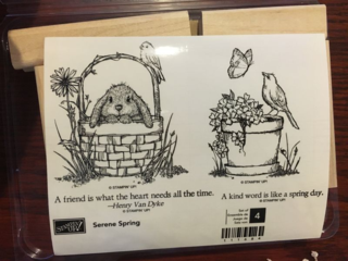 Stampin' Up! Retired Serene Spring