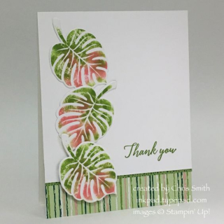 Tropical Chic baby Wipe card by Chris Smith at inkpad.typepad.com