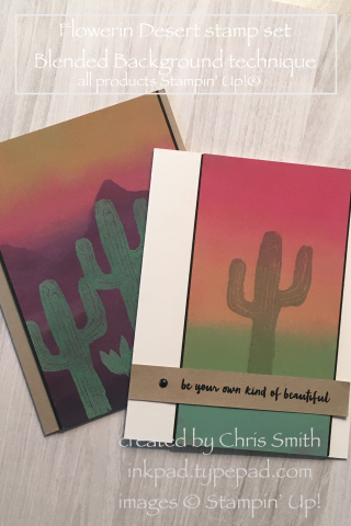 Stampin' Up!'s Flowering Desert Duo by Chris Smith at inkpad.typepad.com