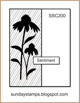 SSC200
