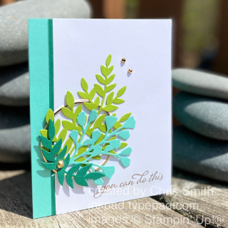 CC792 Forever Fern Bundle card by Chris Smith at inkpad.typepad.com