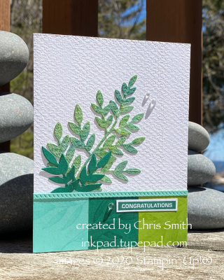 Forever Fern Colorblock base card by Chris Smith at inkpad.typepad.com