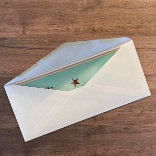 Darling Donkeys in envelope