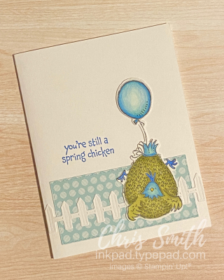 CC837 Hey Birthday Chick Stampin up card by Chris Smith