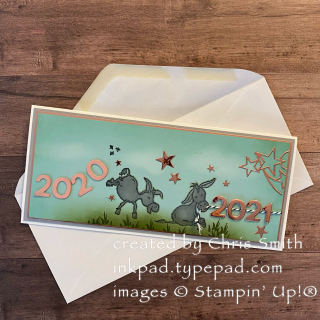 Darling Donkey's Shiny New Year with Envelope