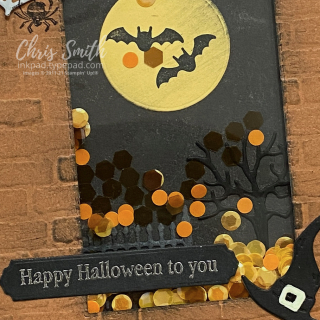 Close up Frightfully Cute Bundle Stampin Up Halloween Shaker Card by Chris Smith at inkpad.typepad.com