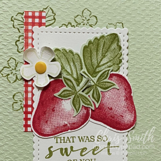 Sweet Strawberry on sea foam stampin up close up