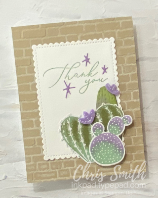 Flowering Cactus + Heal Your Heart Thank You Stampin Up card by Chris Smith