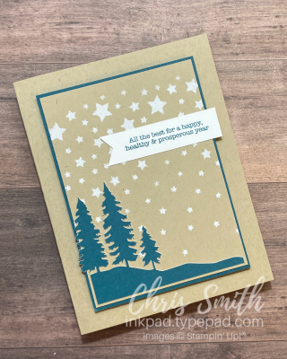 PP Here's To You stars stampin up paper pumpkin cards by Chris Smith